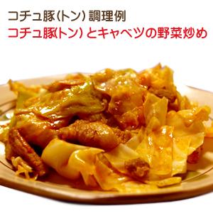 コチュ豚(豚)とキャベツの野菜炒め