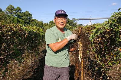 豊重さんと自然薯畑